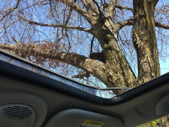 sun roof is open