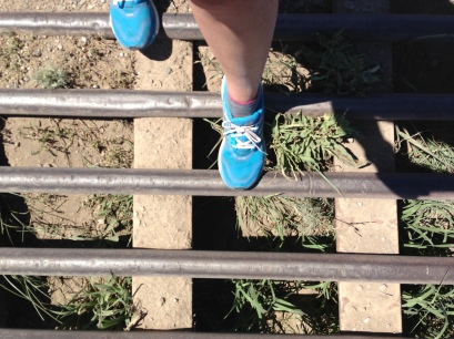 cattle grates--to keep the cows (and small-footed people) from crossing into new territory